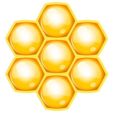 colmena: Ilustraci?n vectorial de nido de abeja