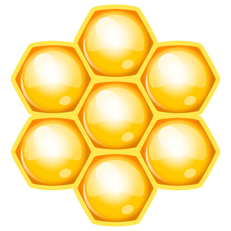 apiculture: Vector illustration of honeycomb