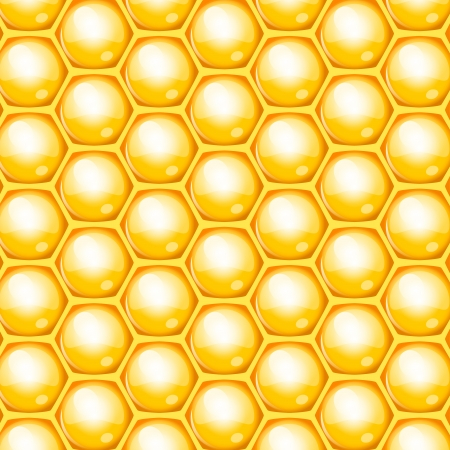 apiculture: Vector honeycomb background