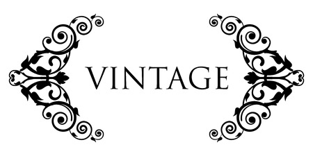 Vector floral vignette Reklamní fotografie - 32648421