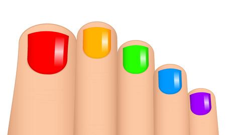 cosmetician: Vector illustration of colorful toenails