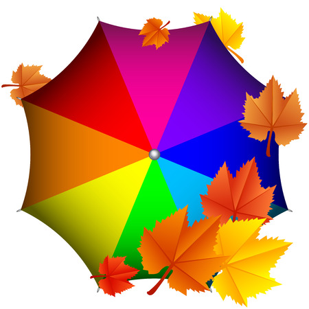 Vector illustration of colorful umbrella with leaves Vector