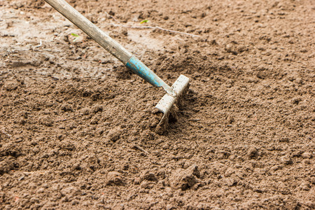 loosen: rake loosen dig up the ground in the spring before planting vegetables in the garden