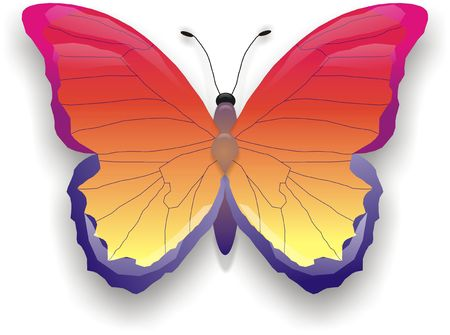butterfly tattoo: illustration of yellow-red butterfly