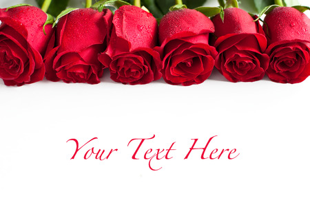 mother's  day: Red roses on white background