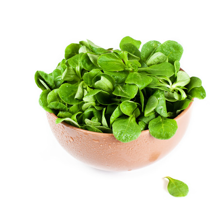 Bowl of fresh salad leaves photo