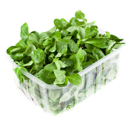 Container with fresh salad leaves photo