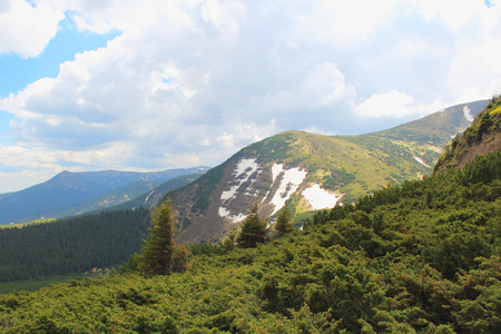 enebro: Green mountains with snow on the slopes. Juniper bushes Foto de archivo