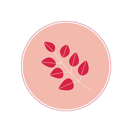 vector graphic icon emblem logo for business social media stories highlights, bloggers in pastel color. branch with red leaves on a pink background