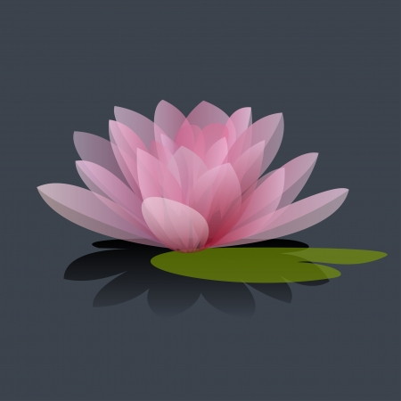 water on leaf: Lotus flower isolated on a black background  Vector illustration
