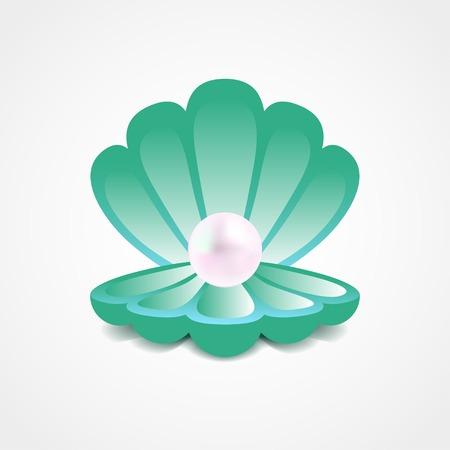 petoncle: Vecteur vert de mer coquille avec une perle � l'int�rieur