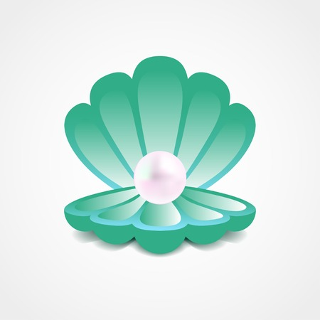 scallop shell: Vector sea-green shell with a pearl inside