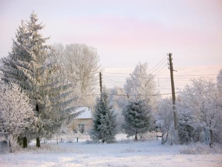 Winter rural landscape under snow photo