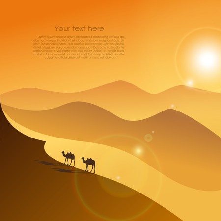 desert sunset: Two camels in desert