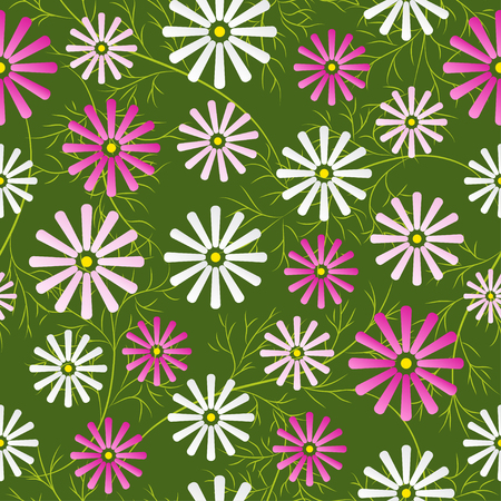 cosmos: Cosmos flowers field seamless pattern. Vector illustration