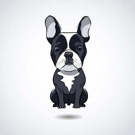 Bulldog francés aislado en el fondo blanco. ilustración Foto de archivo - 56447927