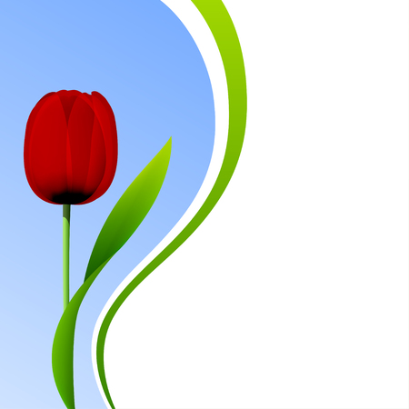 Tulip isolated on blue sky background Ilustração