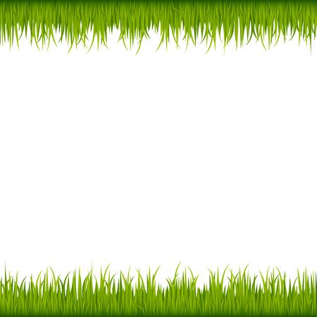 Green grass frame Ilustração