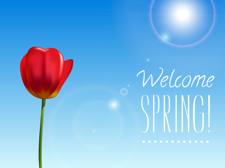 Spring background with tulip 일러스트