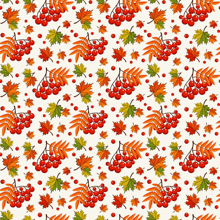 rowan: Colorful autumn background with rowan berries and maple leaves. Vector seamless pattern.