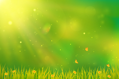 Sunny summer or spring background. Blurred abstract design with green grass, flowers, butterflies and sunlight. Vector.