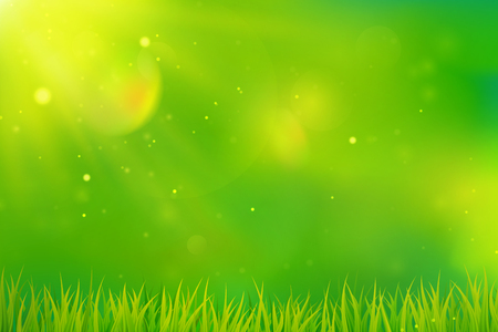 Green spring background blurred abstract design with grass and sunlight.