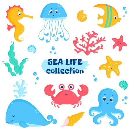 Sea animals and plants elements - whale, fish, crab, seahorse, octopus, starfish, jellyfish, shells, coral, seaweeds. Vector set of cute illustrations isolated on a white background.