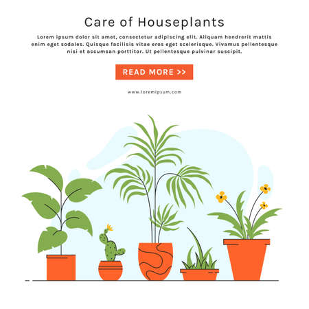 Houseplant care banner with place for text. Indoor plants in pots. Vector illustration in trendy style.