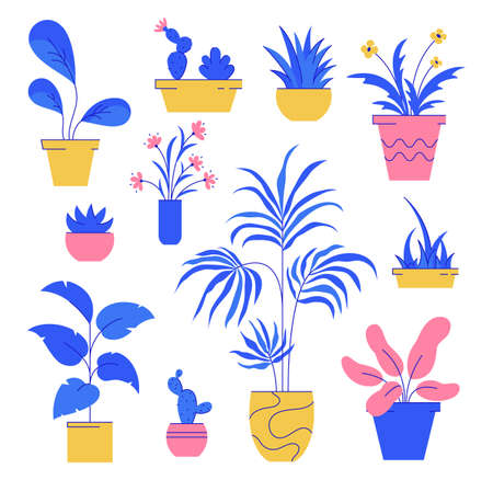 Houseplant set. Collection of potted plants isolated white background. Vector illustration.