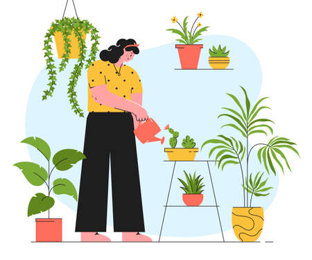 Houseplant care concept. Young woman is watering of indoor plants. Vector illustration in trendy style isolated on white background. Иллюстрация