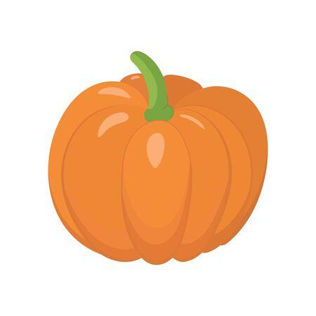 Pumpkin vector illustration. Fresh seasonal vegetable. Icon design.