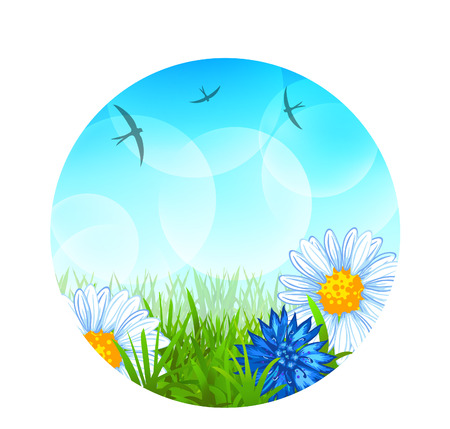 Round summer background with grass, swallows, daisies, cornflowers and bubbles