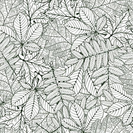 venation: seamless pattern made Isolated skeletal oak, chestnut, rowan, maple leafs with veins. vector illustration