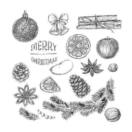 manzana caricatura: Elementos de la Navidad aislados para el dise�o en el grabado de estilo vintage. Apple, nueces, avellanas, flores y granos de canela, canela, rama de abeto, pino y abeto conos, cascabeles, cinta, inscripci�n manuscrita Feliz Navidad, Naranja, bal de Navidad