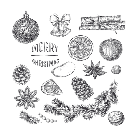 Isolated Christmas elements for design in vintage style engraving. Apple, walnuts, hazelnuts, flowers and grains of cinnamon, cinnamon, fir branch, pine and spruce cones, jingle bells, ribbon, handwritten inscription Merry Christmas, Orange, Christmas bal