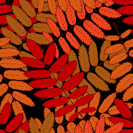 cleft: seamless randomly pattern made Isolated colored autumn  rowanleaves . vector illustration