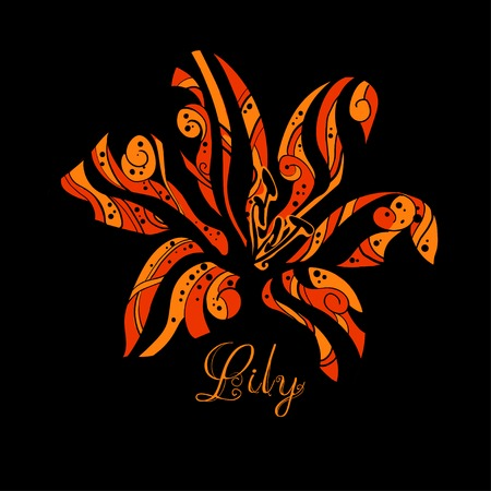 lily vector: Tiger Lily. Vector illustration. Bright and stylish print can be used as a poster, cards, printing on textiles.
