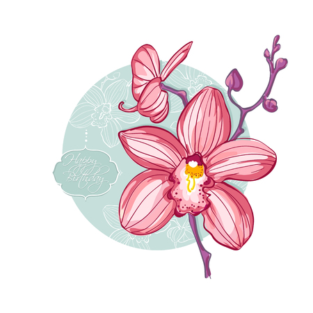 pink orchid: pink orchid on a circular green background in retro style Illustration