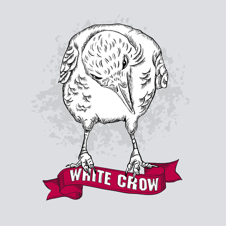 outcast: isolated white crow sitting on a red ribbon. It can be used as a greeting card or print on fabric. vector illustration
