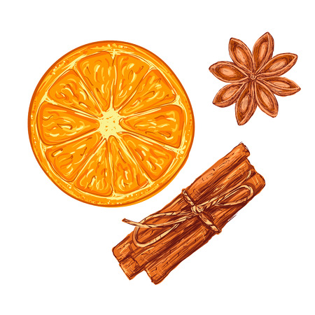 cinnamon sticks: Realistic Isolated set tea or a cocktail of orange slice, Cinnamon Sticks and Star Anice on White Background. Vector Illustration