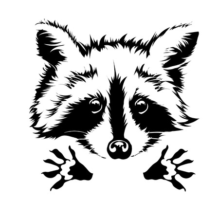 Funny and touching raccoon wants to hug and cuddle. Illustration