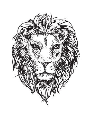 hand-drawn vector sketch of a lion's head