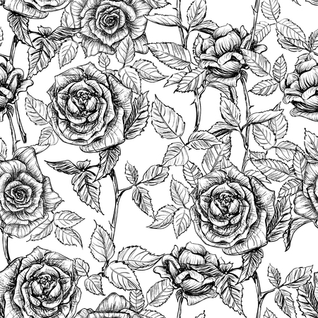 soulful: hand drawn black and white elegant seamless pattern of roses and petals in old engraving style