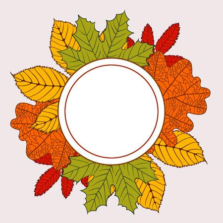 mountain ash: round frame with autumn leaves - birch, oak, maple, mountain ash, chestnut