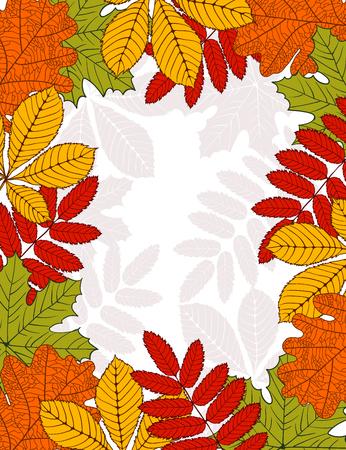 mountain ash: frame with autumn leaves - birch, oak, maple, mountain ash chestnut Illustration