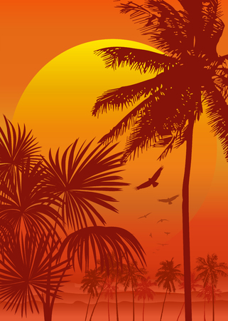 vector of a tree during sunrise Illustration