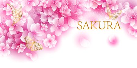 Cherry blossoms sakura illustration