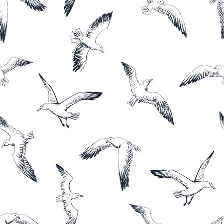 gulls seamless pattern 向量圖像