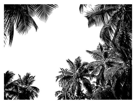 Tropical frame of coconut palm trees. Jungle banner
