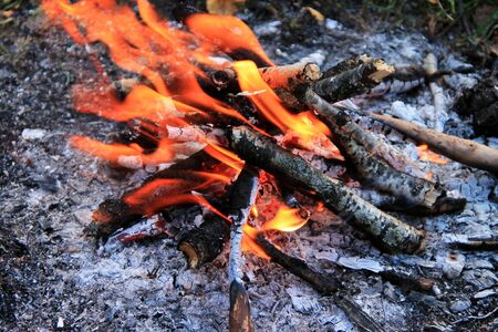 Bonfire in the autumn forest. Tongues of flame, burning dry branches. Close-up. Stockfoto